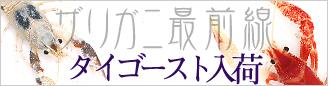 bnr_Tha1_gh0st.jpg